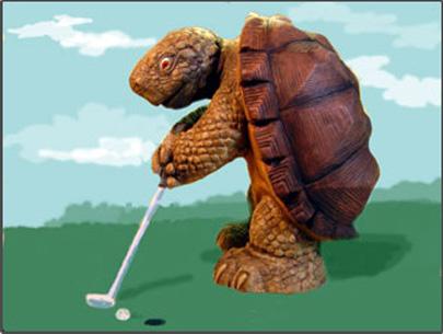 slow-turtle