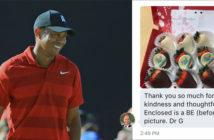 fan-sends-tiger-back-doctor-fruit-basket
