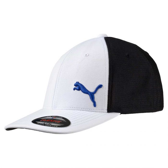 Puma Performance Mesh FlexFit Hat